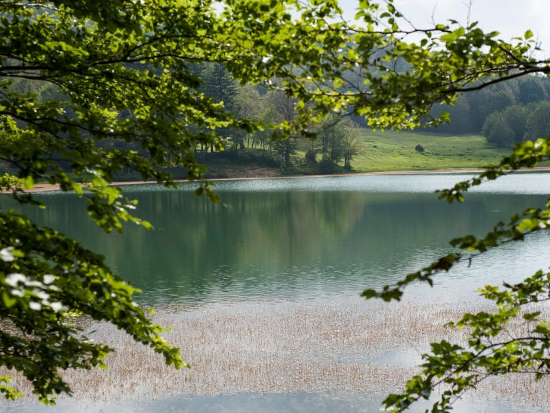 IL Lago Calamone